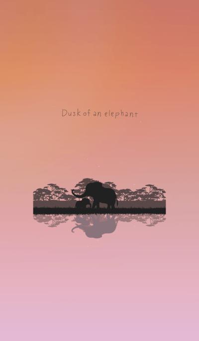 Dusk of an elephant