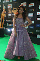 Parul Yadav in Stunning Purple Sleeveless Transparent Gown at IIFA Utsavam Awards 2017  Day 2  Exclusive 07.JPG