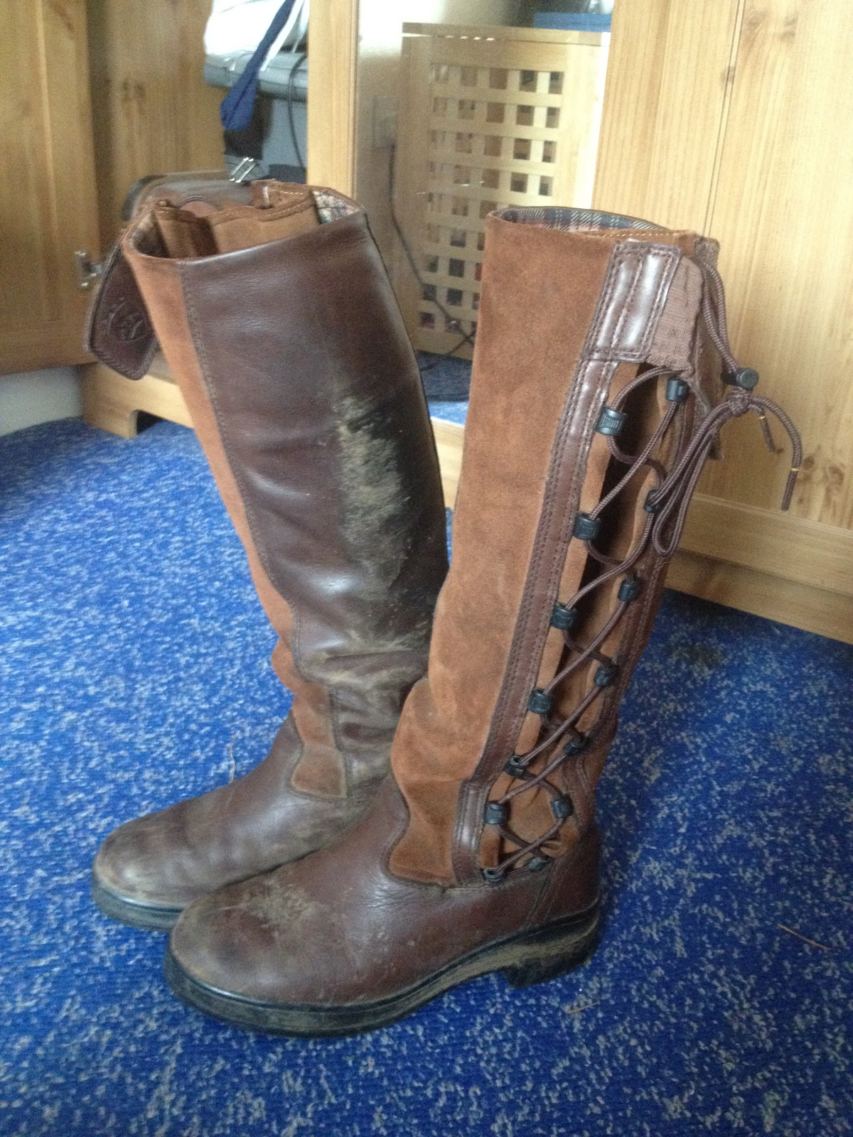 The Rider S Review Ariat Grasmere Review