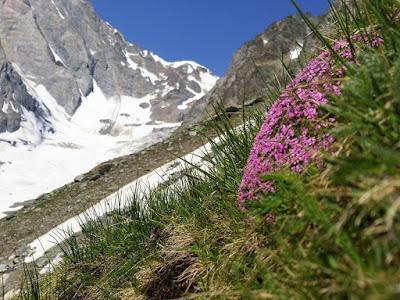 Mont Blanc od strony włoskiej