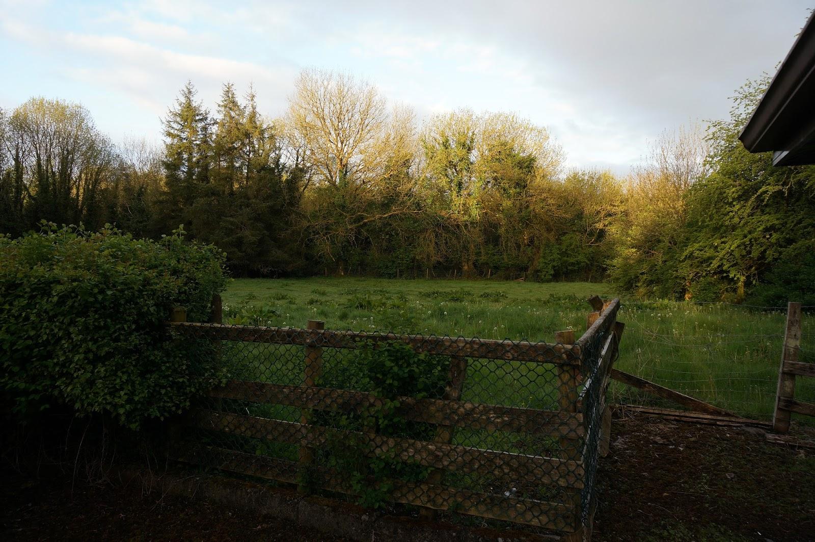 Galway Ireland Countryside