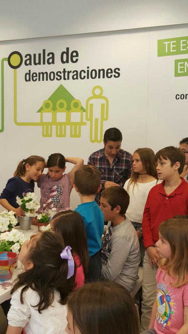 taller decoracion macetas diy