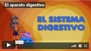 Aparato Digestivo en Español