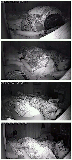 A guy was wondering why he was getting sleep paralysis every night, so he set up a night-cam