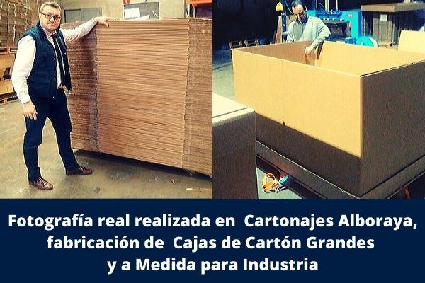 Fabricamos Cajas de Cartón grandes y a medida