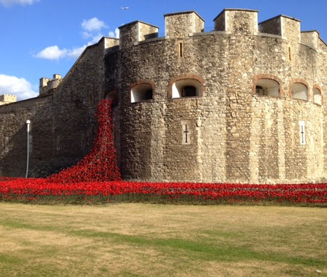 Wapenstilstand, bloed, keramiek, herdenking, engeland, Eerste Wereldoorlog, bloemen, installatie, Londen, militair, Paul Cummins, papavers, papaver, Beeldhouwkunst, Tower of London, Verenigd Koninkrijk