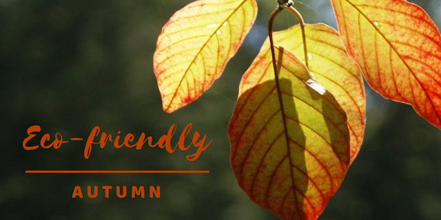 Eco-friendly autumn