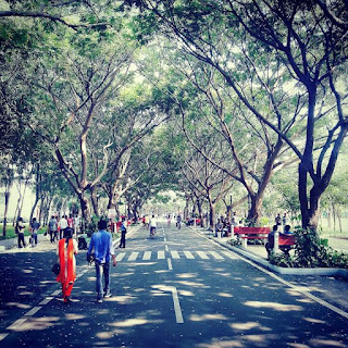 Trees, Road, Infosys, Infosys Office, Infosys Chennai
