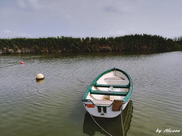 Parcul-National-Albufera-Valencia-Impresii-Pareri