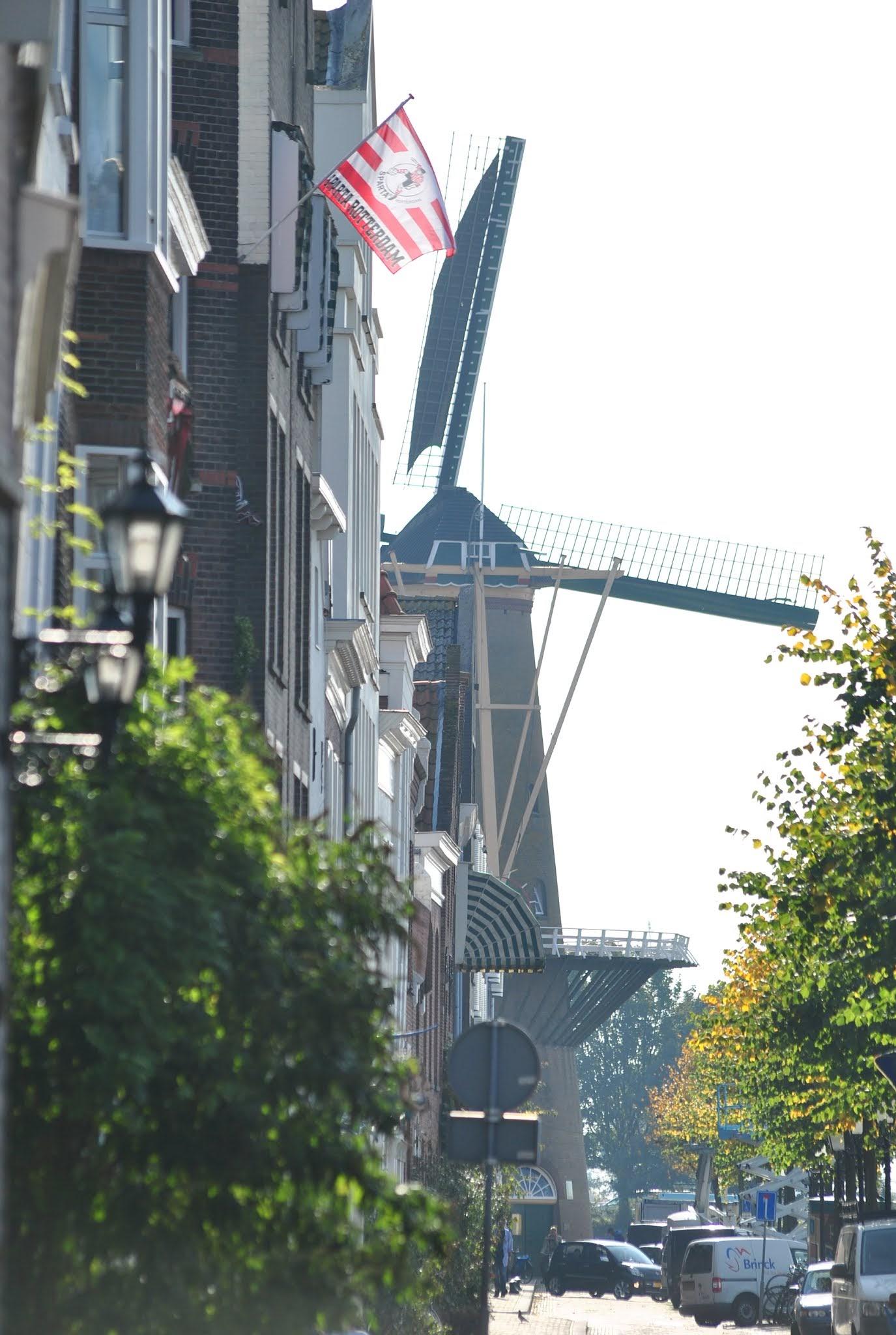 Wiatrak w Rotterdamie