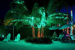 Get More Out Of Your South Florida Property With Landscape Lighting