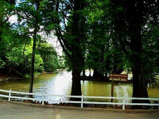 Lago do Horto Florestal de São Paulo