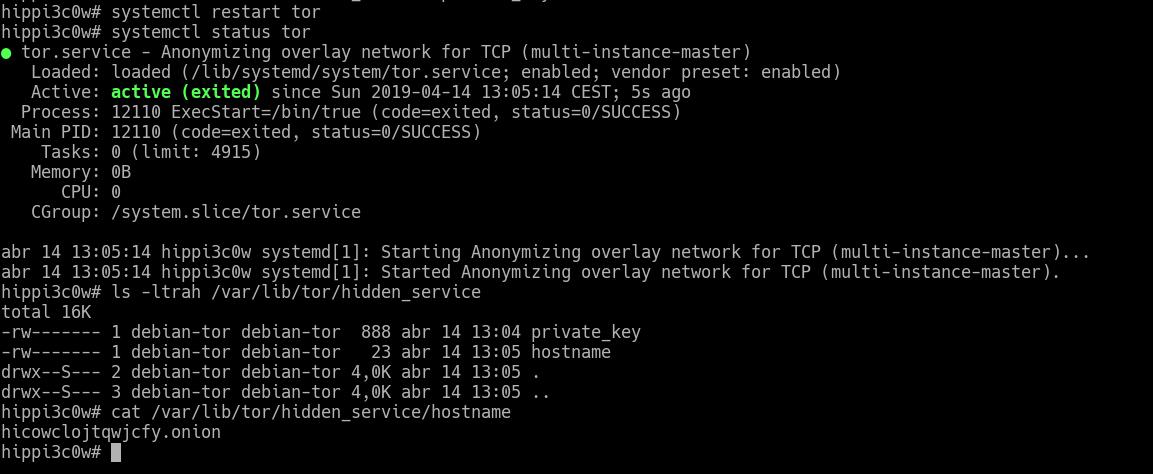 Black Network Hacking: Creando nuestros propios servicios ocultos en TOR