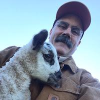 Livestock and Predators: No Easy Answers