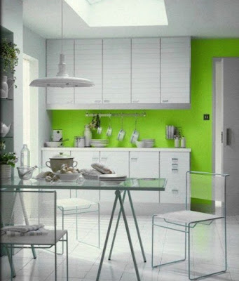 Kitchen color ideas pretty clean and minimalistic