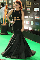 Nikesha Patel in Beautiful Figure Hugging Black Dress  at IIFA Utsavam Awards 2017  Day 2 at  08.JPG