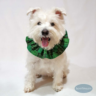 Lucky Irish Shamrocks St Patricks Day Dog Scrunchie