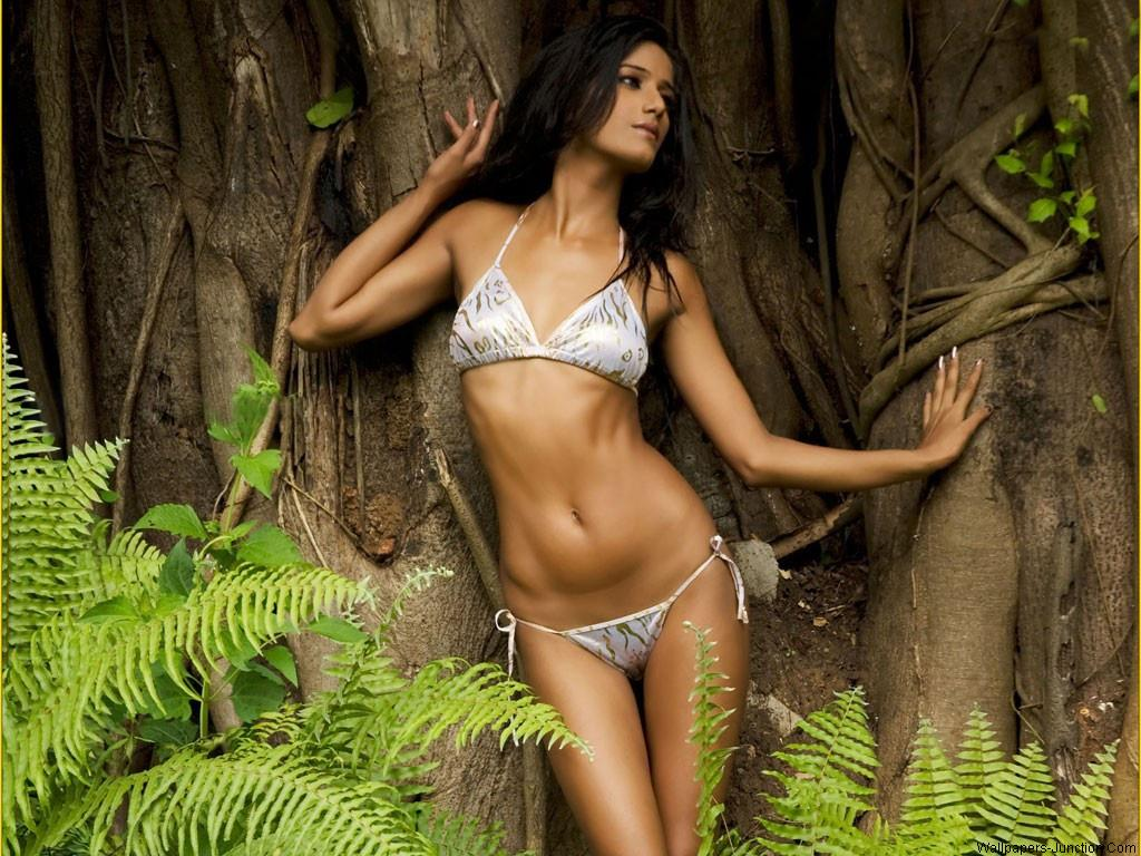 Poonam Pandey Sexy Hot Wallpapers Poonam Pandey Naked Pics-6127