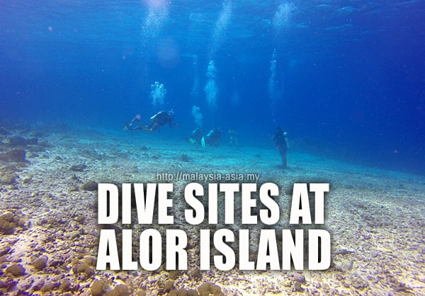 Alor Island Dive Sites