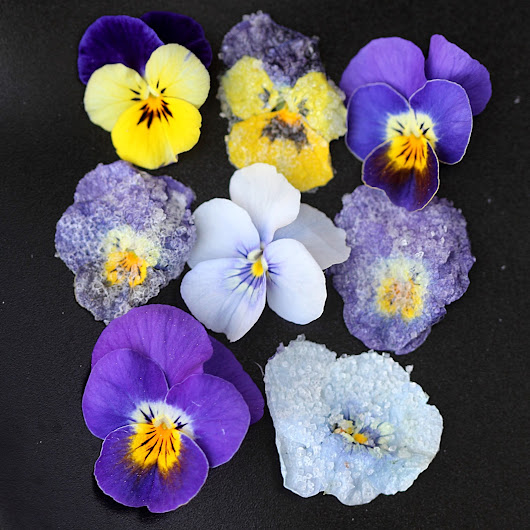 Crystallized Violets | CookingWithGifs