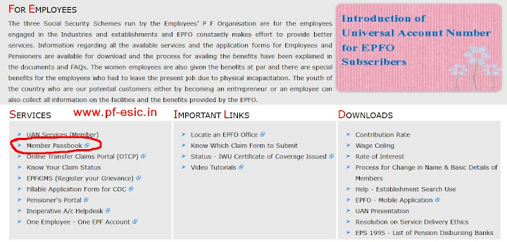 Employees page on EPFO site