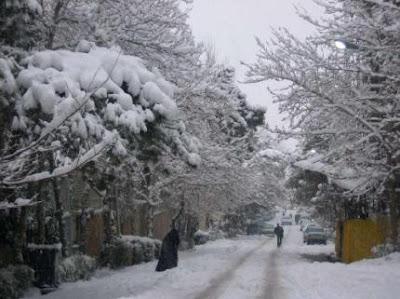 Foto de nieve sobre los árboles