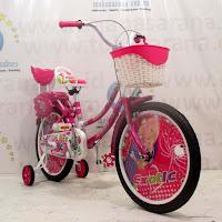 18 exotic ctb sepeda anak