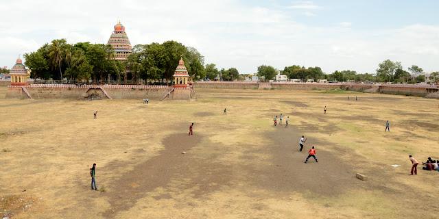 Imagen de Cricket en India