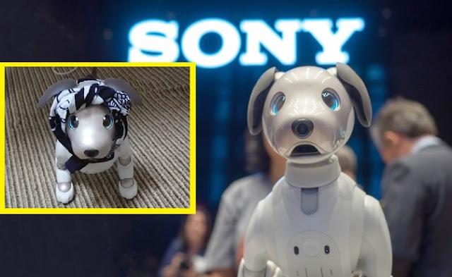 inteligencia, artificial, juguetes, tecnología,