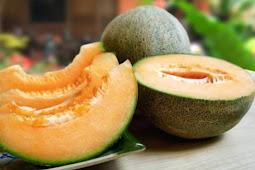 Cara Memilih Melon Matang Dan Manis Dengan Mudah Dan Tepat