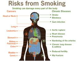 bad effects of tobacco on our body