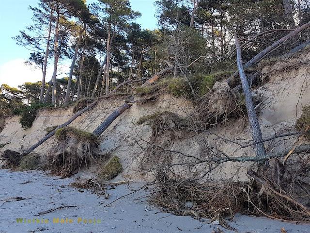 Bałtyk, morze bałtyckie, morze zimą, Bałtyk zimą, sztorm, sztorm na Bałtyku, zaśmiecanie morza, ekologia, zaśmiecony Bałtyk, po sztormie, Bałtyk, morze bałtyckie, morze zimą, Bałtyk zimą, sztorm, sztorm na Bałtyku, zaśmiecanie morza, ekologia, zaśmiecony Bałtyk, po sztormie, Baltic Sea, Baltic Sea, winter sea, Baltic Sea in winter, storm, storm in the Baltic Sea, littering the sea, ecology, littered by the Baltic Sea, after a storm, plaża, zaśmiecona plaża, Ostsee, Ostsee, Wintermeer, Ostsee im Winter, Sturm, Sturm in der Ostsee, Abfälle am Meer, Ökologie, verunreinigte Ostsee, nach dem Sturm, Strand, verunreinigter Strand, Балтика, Балтийское море, зимнее море, Балтика зимой, шторм, шторм в Балтийском море, мусор моря, экология, замусоренная Балтика, после шторма, пляж, замусоренный пляж,