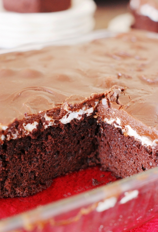 Marshmallow Chocolate Cake Tender Tasty Topped With A Layer Of Gooey