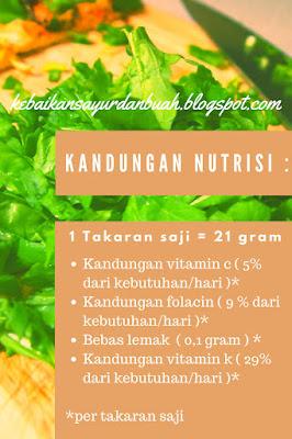 kandungan nutrisi pada Arugula dan efek samping dari arugula