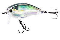 Wake Shad Lure
