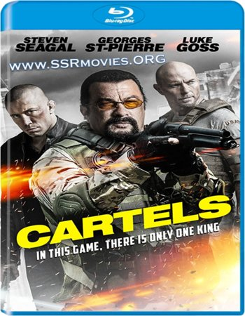 Cartels (2017) Dual Audio Hindi 480p BluRay 300MB