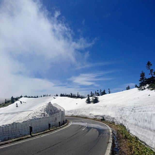 志賀草津高原ルート 雪の回廊