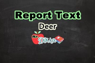 Contoh Report Text Singkat Tentang Rusa Beserta Artinya Contoh Text Bahasa Inggris Lengkap