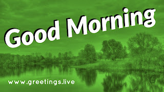 Excellent good morning wishes green background