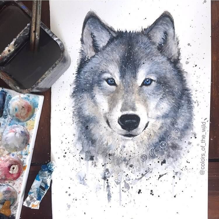 11-Grey-Wolf-Kathrin-Schwarz-Animal-Paintings-in-Different-Styles-www-designstack-co