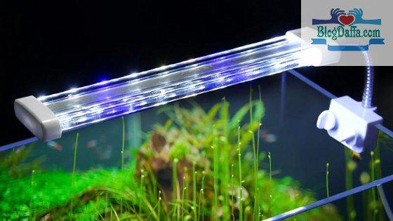 Jenis lampu LED untuk aquascape
