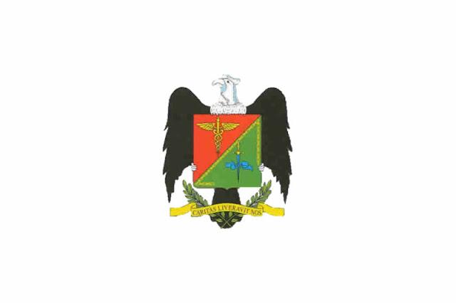 Bandera de Junin