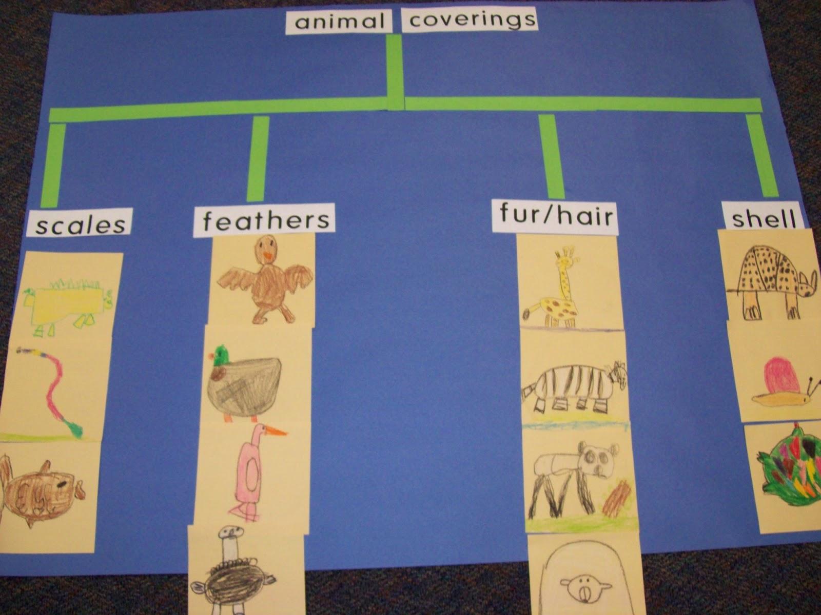 Chalk Talk A Kindergarten Blog Zipping To The Zoo