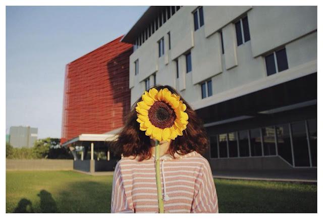 """Top 7 ngôi trường có background cực đẹp cho những bức ảnh """"triệu like"""""""