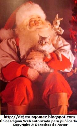 Papa Noel abrazando a un gato. Foto de Papa Noel de Jesus Gómez