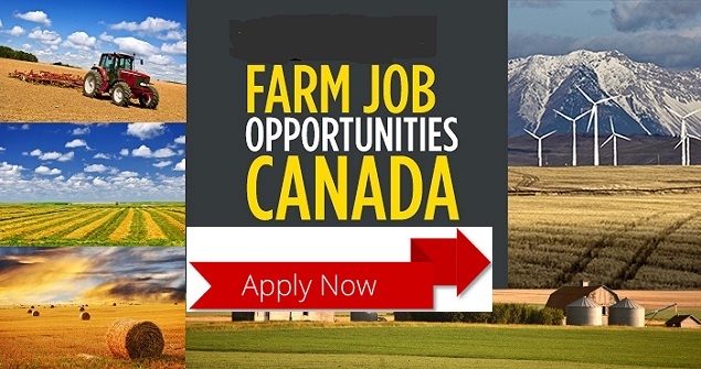 Find Farm Jobs In Canada | Jobs And Visa Guide