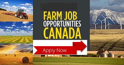 Find Farm Jobs In Canada