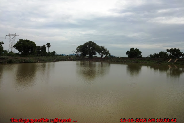 Tirupattoor Siva Temple Pond