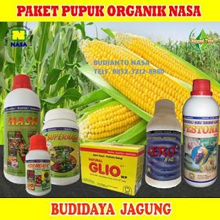 AGEN NASA DI Harian, Samosir  - TELF 082334020868