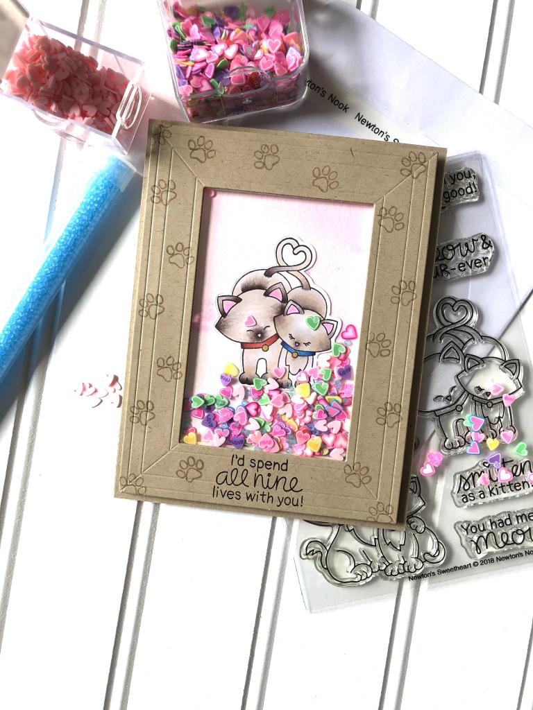 Sweet Shaker Frame Card by July Guest Designer Kay Demonbren   Newton's Sweetheart Stamp Set by Newton's Nook Designs #newtonsnook #handmade